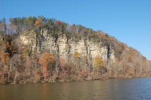 Bluff line overlooking the Cumberland River, October 2012.